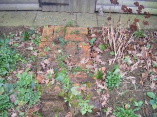 compost heap and path 002