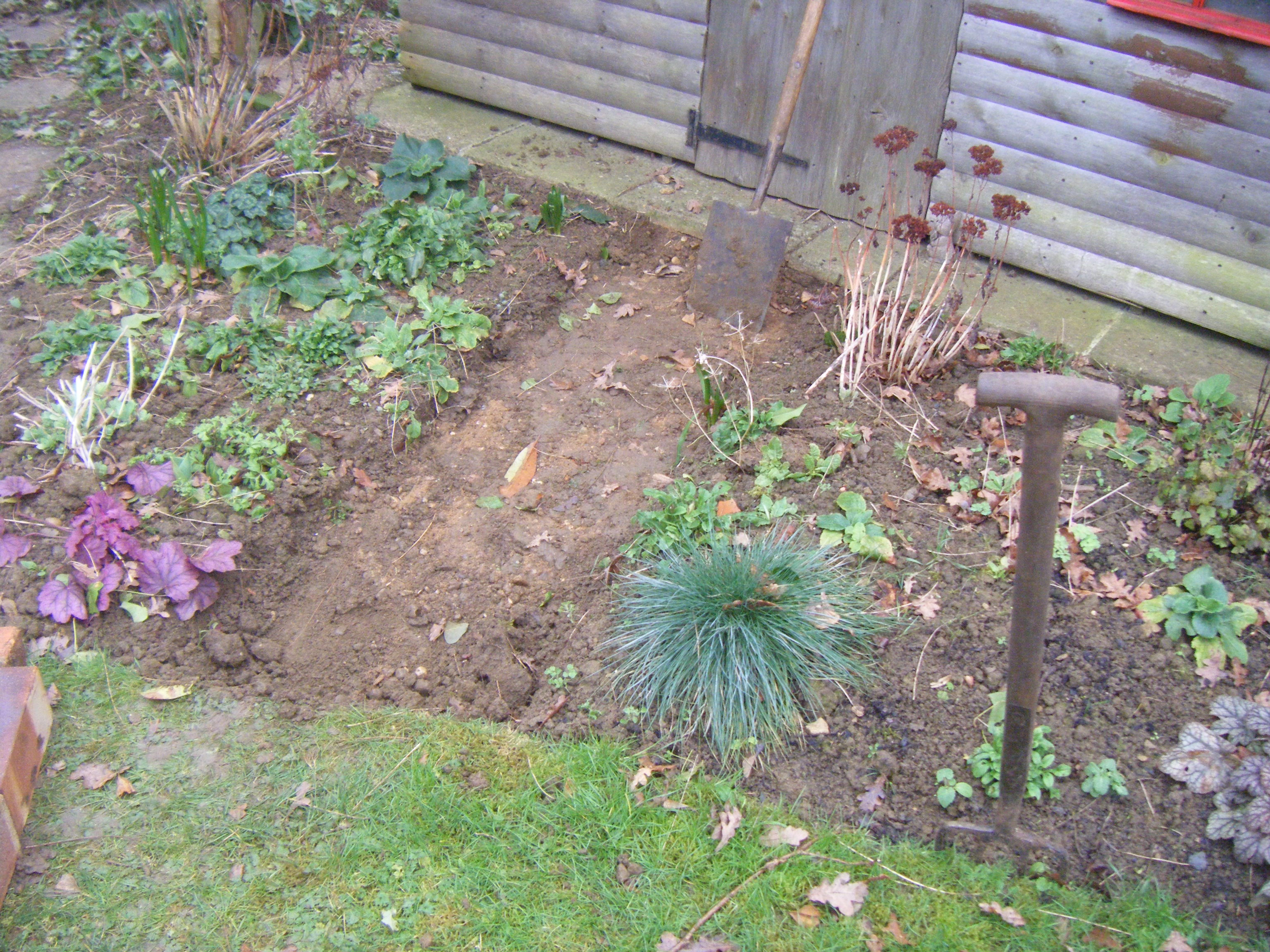 compost heap and path 009