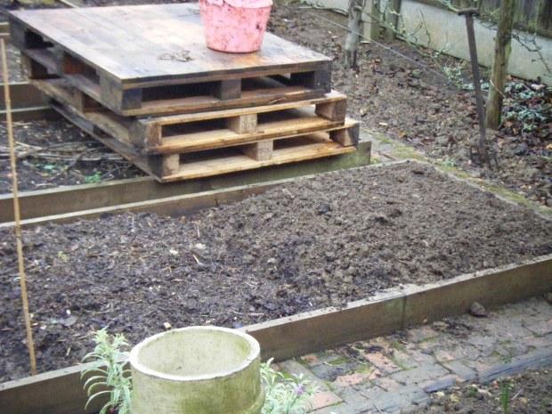 garden 3.01.16 008