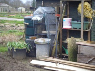 Allotments and puddles 036
