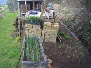Allotments and puddles 043
