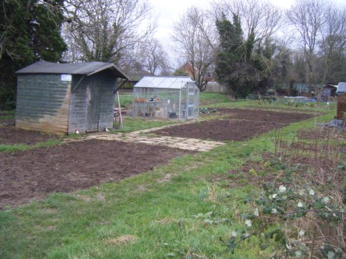 Allotments and puddles 049.JPG