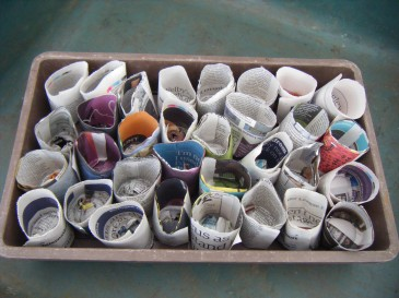 paper pots 002